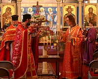 Sunday of the Cross